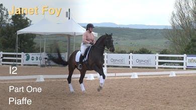 Janet Foy - I2 - Part One - Piaffe by Dressage Today Online