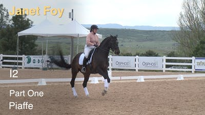 Instant Access to Janet Foy - Intermediate II, Part 1 - Piaffe by Dressage Today Online, powered by Intelivideo