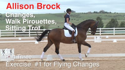 Instant Access to Allison Brock - Third Level Work, Part 3 by Dressage Today Online, powered by Intelivideo