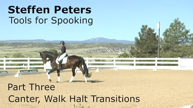 Steffen Peters - Tools for Spooking - Part 3 - Canter, Walk Halt Transitions by Dressage Today Online
