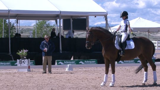 Axel Steiner - Third Three by Dressage Today Online, powered by Intelivideo