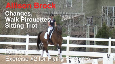 Instant Access to Allison Brock - Third Level Work, Part 4 by Dressage Today Online, powered by Intelivideo