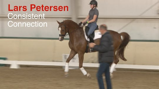 Instant Access to Lars Petersen - Consistent Connection by Dressage Today Online, powered by Intelivideo