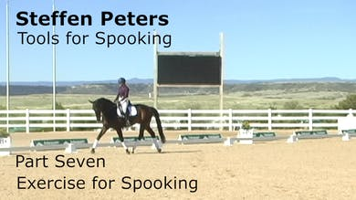 Steffen Peters - Tools for Spooking - Part 7 - Exercise for Spooking by Dressage Today Online