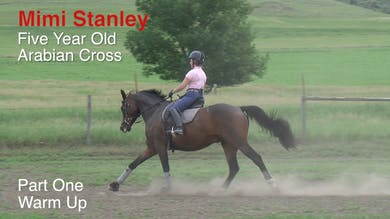 Mimi Stanley - 5-Year-Old Arabian Cross, Part 1 - Warm-Up Walk by Dressage Today Online