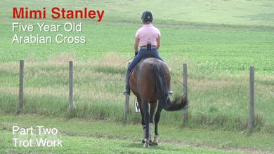 Mimi Stanley - 5-Year-Old Arabian Cross, Part 2 - Trot Work by Dressage Today Online