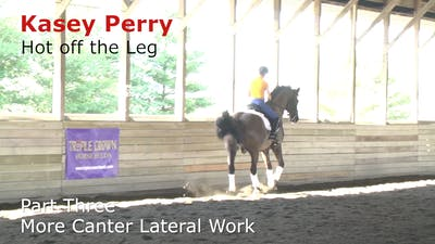 Instant Access to Kasey Perry-Glass - Hot Off the Leg, Part 3 - More Canter Lateral Work by Dressage Today Online, powered by Intelivideo