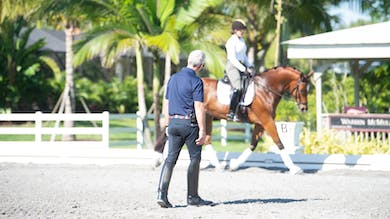 George Williams - Kindergarten Exercises, Phase 2 by Dressage Today Online