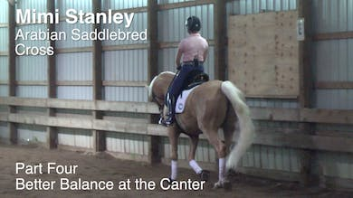 Mimi Stanley - Arabian Saddlebred Cross - Part Four - Adding Impulsion Without Running by Dressage Today Online