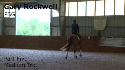 Instant Access to Gary Rockwell - Prix St. Georges, Part 5 by Dressage Today Online, powered by Intelivideo