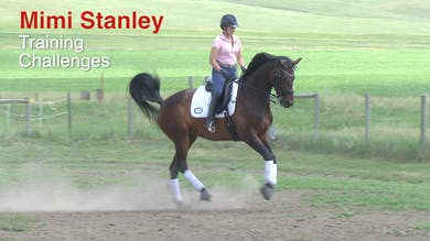 Mimi Stanley - Training Challenges Intro by Dressage Today Online