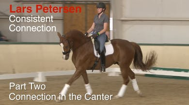 Lars Petersen - Consistent Connection - Part Two - Connection in the Canter by Dressage Today Online