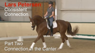 Lars Petersen - Consistent Connection, Part 2 by Dressage Today Online