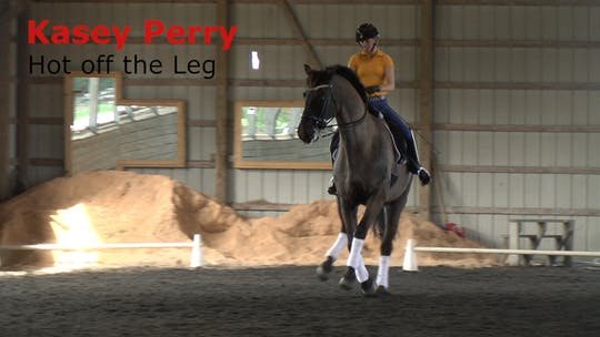 Instant Access to Kasey Perry - Hot Off the Leg by Dressage Today Online, powered by Intelivideo