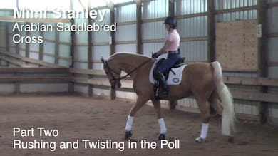 Mimi Stanley - Arabian Saddlebred Cross - Part Two - Rushing and Twisting in the Poll by Dressage Today Online