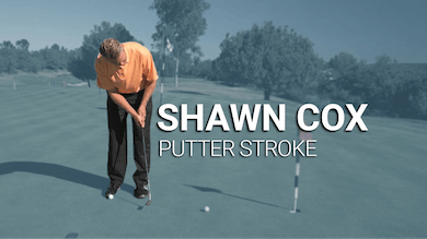 Shawn Cox: Putter Stroke Tip by Golf Life