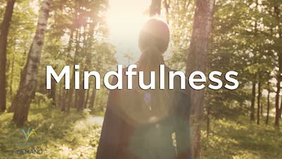 Introduction to Mindfulness by Hilton Head Health ONDEMAND