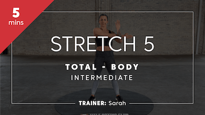 Stretch 5 with Sarah | Total-Body Intermediate by TITLE Boxing Club