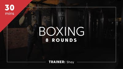 Boxing 8 Rounds with Shay by TITLE Boxing Club