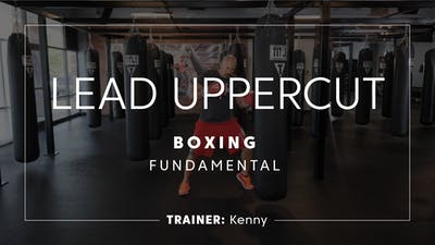Fundamentals | Lead Uppercut by TITLE Boxing Club