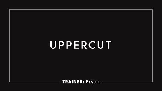 Instant Access to Boxing 101 | Uppercut by TITLE Boxing Club, powered by Intelivideo