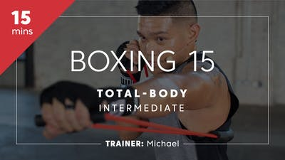 Instant Access to Boxing 15 with Michael | Total-Body Intermediate by TITLE Boxing Club, powered by Intelivideo