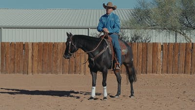 Brad Barkemeyer: Get Forward Motion by Horse&Rider OnDemand