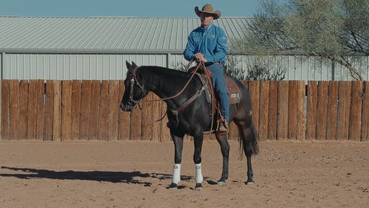 Get access to Brad Barkemeyer: Get Forward Motion by Horse&Rider OnDemand