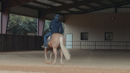 Get access to Bud Lyon: Horse Breaks Into a Lope From an Extended Trot by Horse&Rider OnDemand