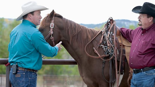 Get access to Ken McNabb: New-Bit Advice by Horse&Rider OnDemand
