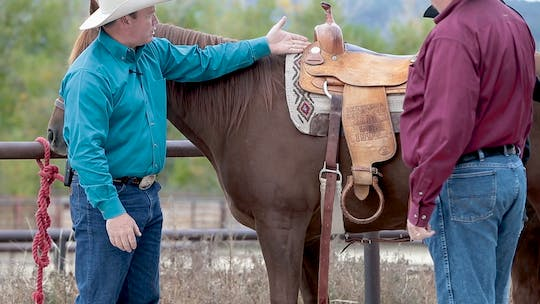 Get access to Saddle-Fit Tips by Horse&Rider OnDemand