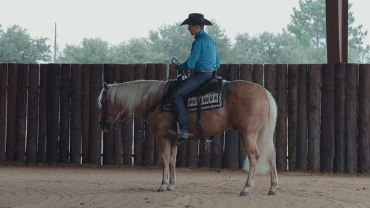 Get access to Bud Lyon: Backup Precise, Then Add Speed by Horse&Rider OnDemand