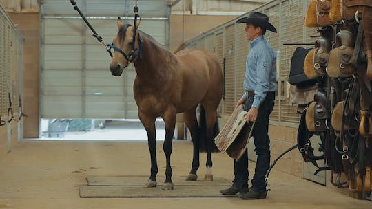Get access to Bud Lyon: Tack for Ranch Riding by Horse&Rider OnDemand