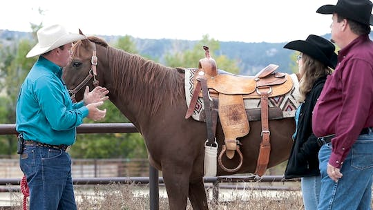 Get access to Ken McNabb: 3 Things a Saddle Pad Must Do by Horse&Rider OnDemand