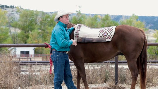Get access to Ken McNabb: Why Saddle Fit Matters by Horse&Rider OnDemand