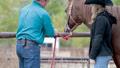 Ken McNabb: Safe Tying by Horse&Rider OnDemand