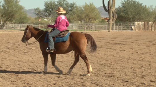 Get access to Al Dunning: Ranch Riding Pattern Evaluation #1 by Horse&Rider OnDemand