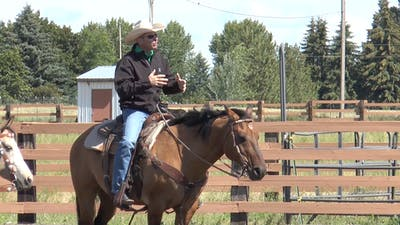 Brad Barkemeyer: Don't Say Whoa by Horse&Rider OnDemand