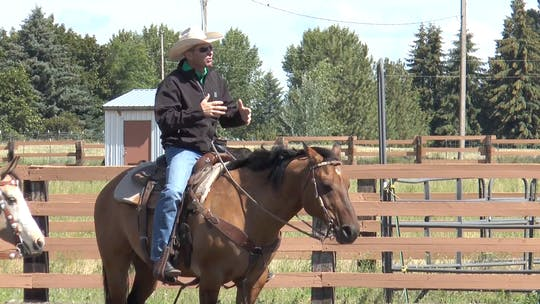 Get access to Brad Barkemeyer: Don't Say Whoa by Horse&Rider OnDemand