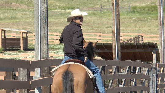 Get access to Brad Barkemeyer: Rollback Drill by Horse&Rider OnDemand