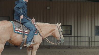 Bud Lyon: Use of Spurs by Horse&Rider OnDemand