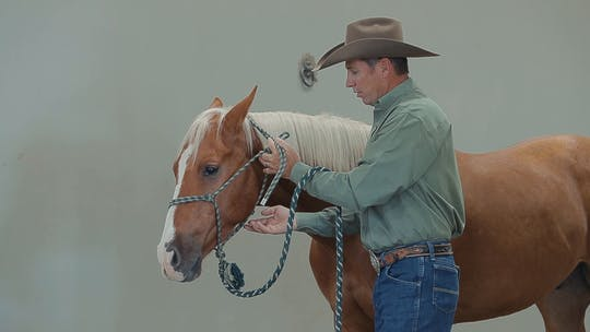 Get access to Brad Barkemeyer: Tying a Rope Halter by Horse&Rider OnDemand