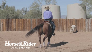 Promo 2 by Horse&Rider OnDemand
