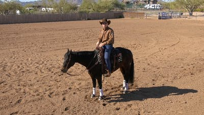 Brad Barkemeyer: 3 Basic Signals for Stopping by Horse&Rider OnDemand