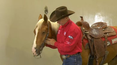 Brad Barkemeyer: Curb Strap Adjustment by Horse&Rider OnDemand