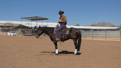 Brad Barkemeyer: Fixing a Chargy Horse in Rundowns by Horse&Rider OnDemand
