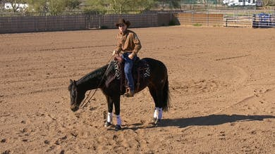 Brad Barkemeyer: Basic Leg Positions by Horse&Rider OnDemand