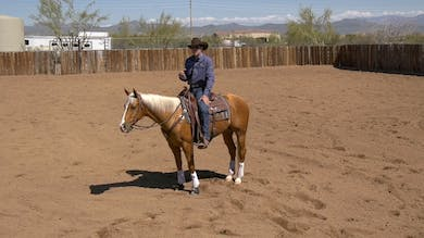 Brad Barkemeyer: Cowhorse Refresher Exercise by Horse&Rider OnDemand