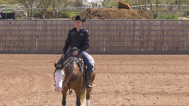 Bud Lyon: Staying Straight During Speed Transitions by Horse&Rider OnDemand