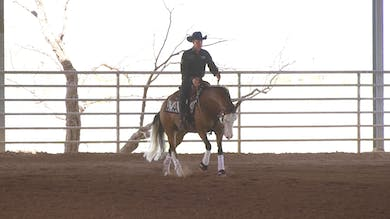 Bud Lyon: Scotching and Anticipating the Stop Part 2 by Horse&Rider OnDemand